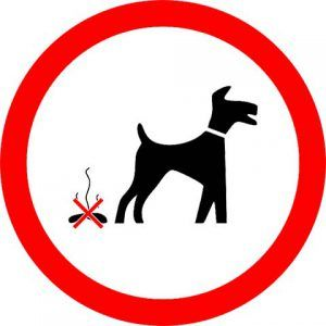 obligación ciudadana de limpiar el excremento de perro
