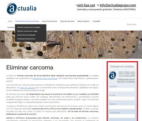web especializada en eliminar carcomas de Actualia