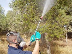 técnico Actualia fumigando contra procesionaria del pino