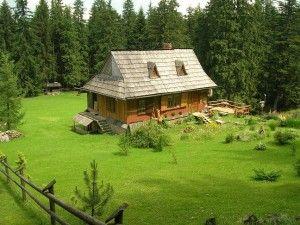 plagas en casa aislada de madera