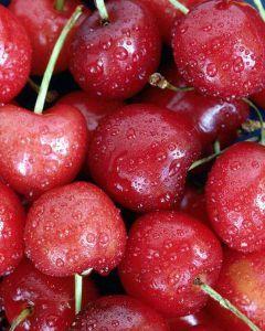 seguridad alimentaria en productos como fruta