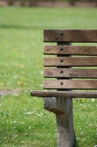 necesidad de prevenir las plagas en los parques