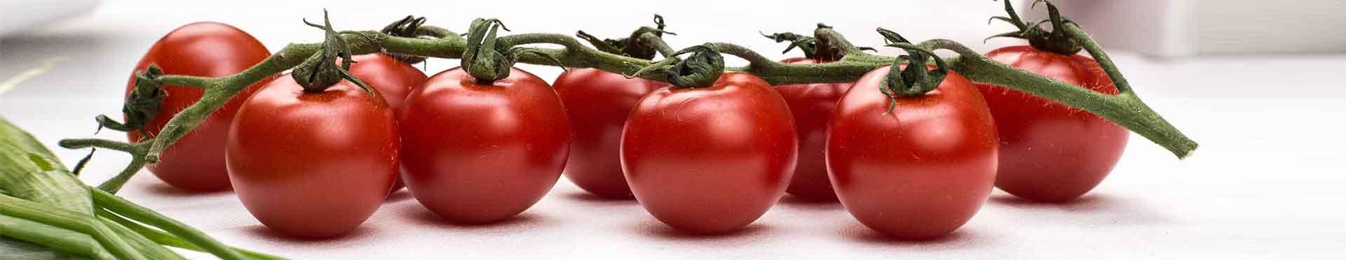 tomates obtenidos con fertilizantes certificados
