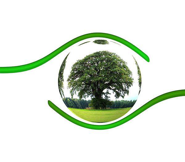 mejorar la conciencia y control medioambiental de empresa