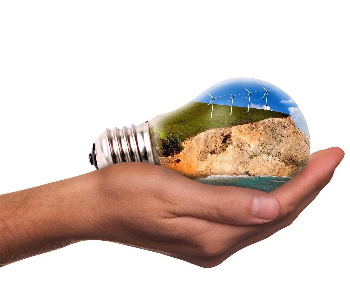 en tu mano está la auditoría ambiental de la empresa