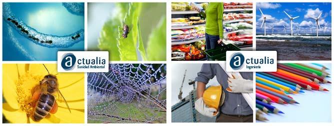 collage servicios Actualia sanidad ambiental, consultoría