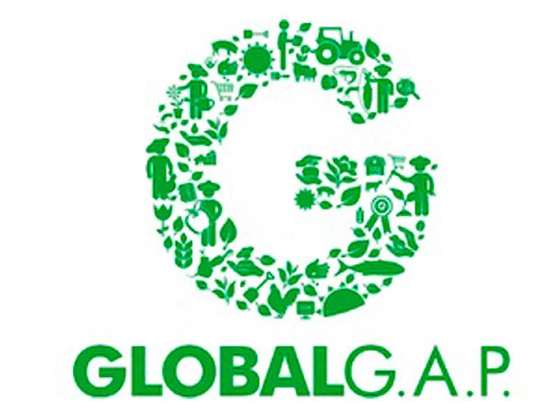 logo referencial GLOBALGAP