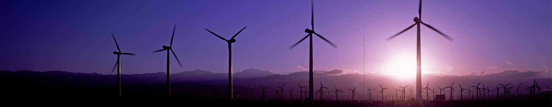 molinos de viento como energía renovable