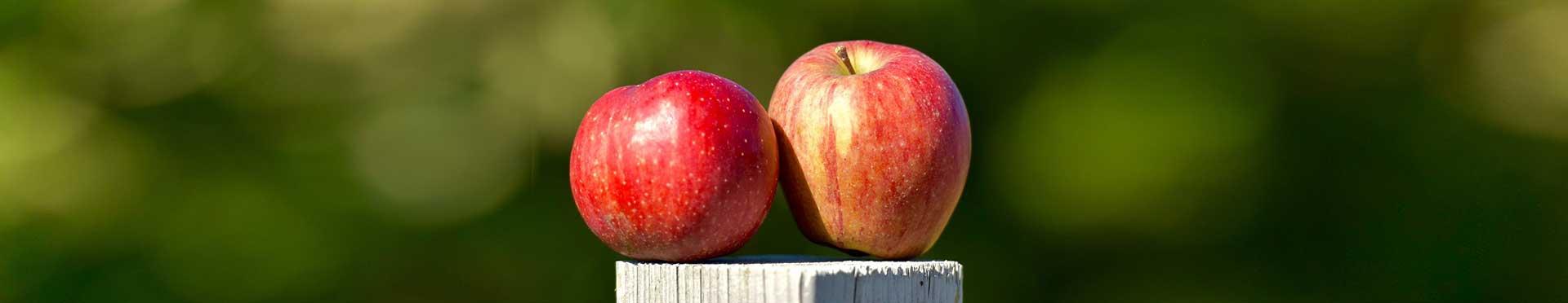 manzanas obtenidas con productos fertilizantes