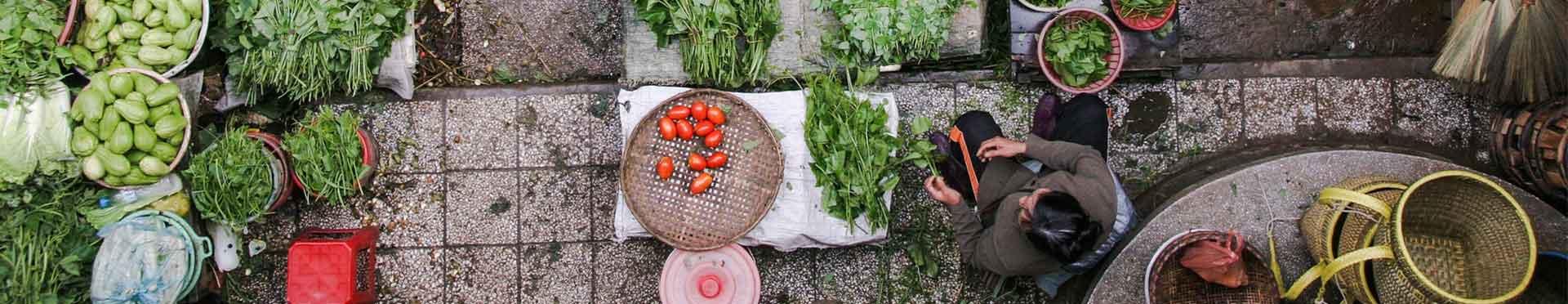 La verdura ecológica requiere fertilizantes ecológicos