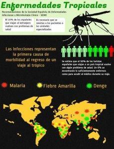 infografía de enfermedades por el mosquito tigre