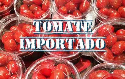 Asesoramiento para importación de fertilizantes de campo