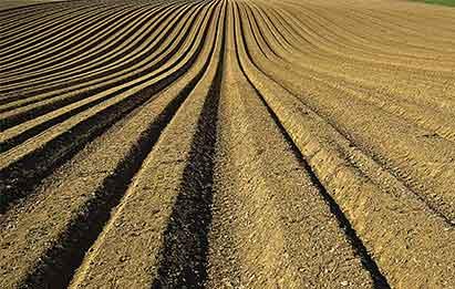 fertilizantes ecológicos y aclaración legislativa