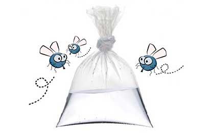 bolsas de plásticos con agua como remedio casero contra moscas