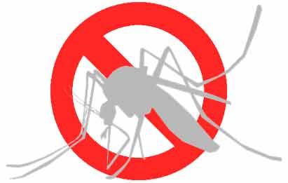 cómo eliminar mosquitos invasores en España