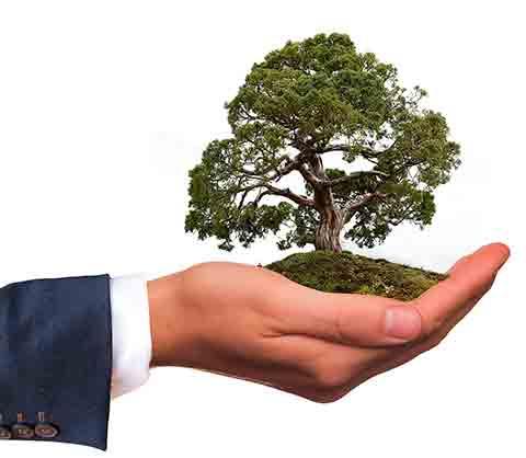 empresa responsable con el entorno